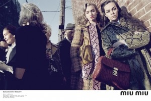 miu-miu-fall-2015-ads-06
